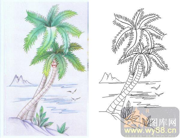椰子树景观手绘