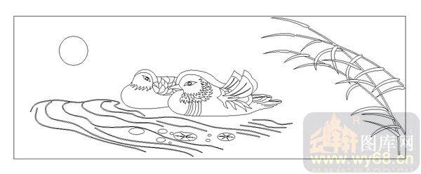 线描-鸳鸯戏水-美术基础-博恩网