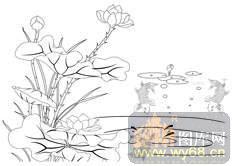 荷花1-白描图-玉洁冰清-hehua113-荷花白描图小学生植物v白描图片