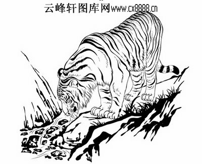 老虎简笔画步骤霸气