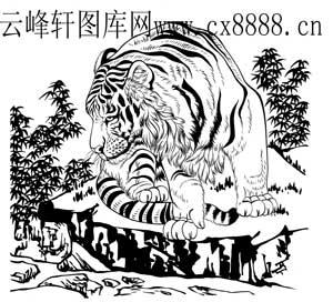 中虎-12-老虎白描图
