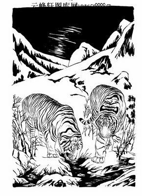 虎第五版-白描图-虎啸风生-9-老虎线描图