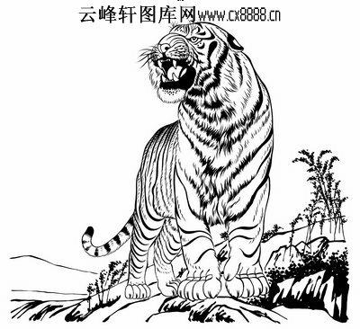 虎第五版-白描图-虎啸-41-老虎雕刻图案