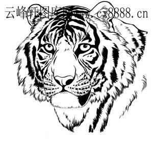 虎第四版-白描图-燕颔虎头-2-老虎雕刻图片