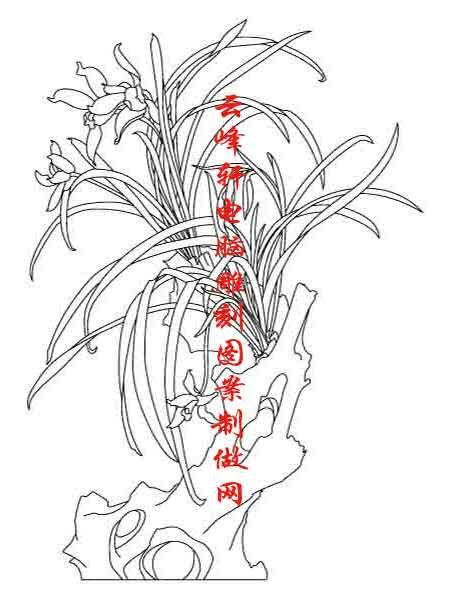 竹菊-白描图-竹子 梅花-mlxj094-梅兰竹菊线描图-梅花流水白描