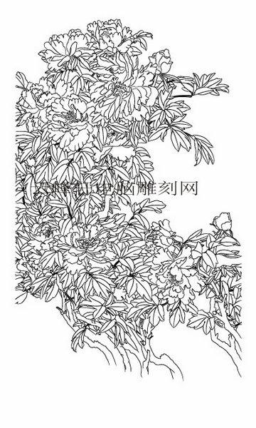 工笔牡丹精选画集-白描图-6独冠群芳-牡丹线描图