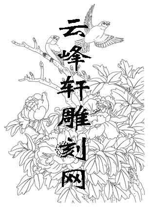 工笔牡丹-白描图-2寿带-白描牡丹图案