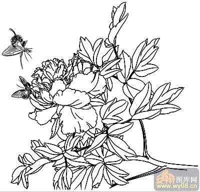 白描富贵牡丹花卉图片_白描富贵牡丹花卉图片下载