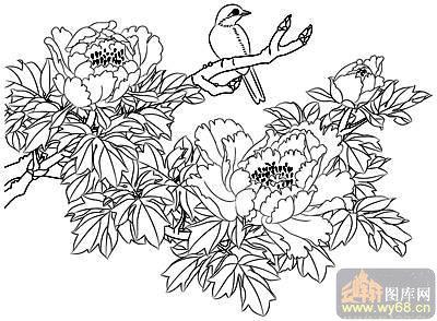牡丹白描画稿-白描图-繁花似锦-51-牡丹白描线描图