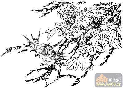 工笔白描牡丹画-天香引蝶-mdbm009-白描牡丹图