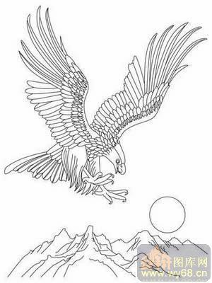 手绘老鹰展翅图片