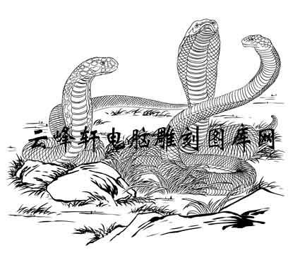 简笔画蛇可爱