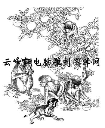 毛笔手绘动物走兽十二生肖生肖猴