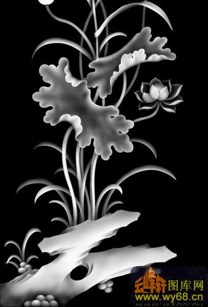 莲花-欧式洋花浮雕灰度图