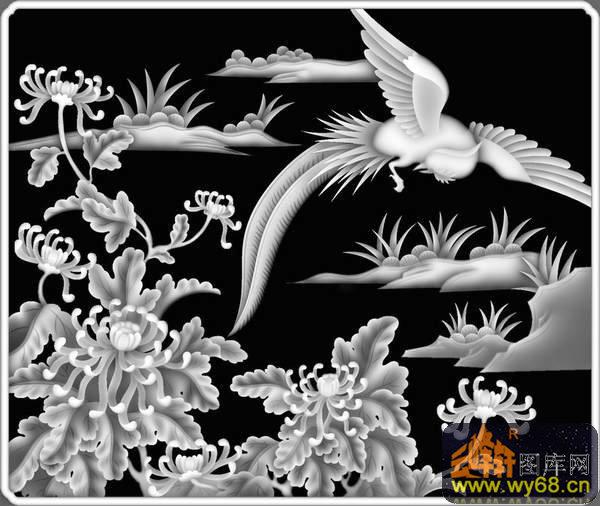 菊花 鸟-灰度图库素材