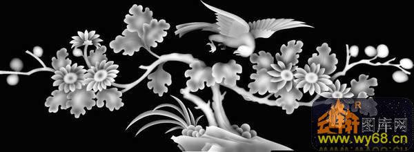 花鸟-灰度图库素材