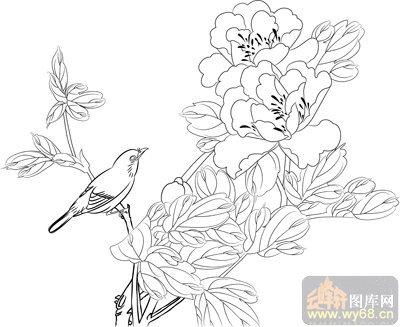 牡丹素描铅笔画图片-古今名句诗词书法 白描图 寿 书法白描图 云峰轩