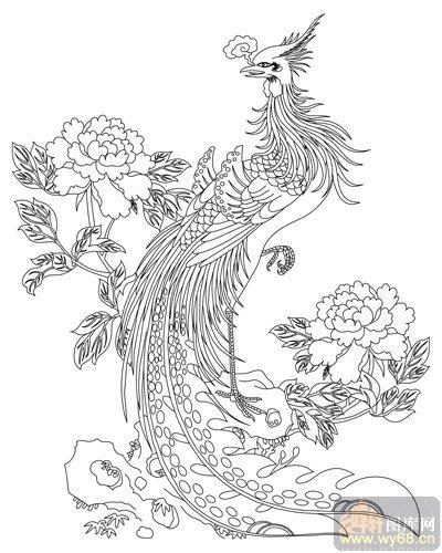 彩铅手绘龙和凤凰