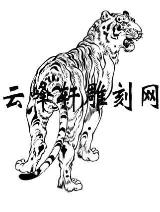 虎2-矢量图-虎狼之势-75-虎路径图