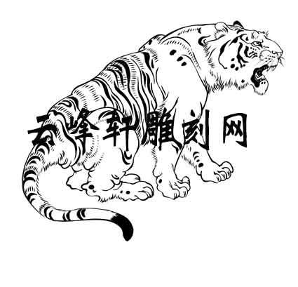 虎矢量图,老虎路径图案