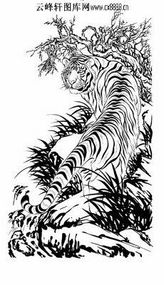 首页 雕刻矢量图路径图案系列 虎矢量图,老虎路径图案