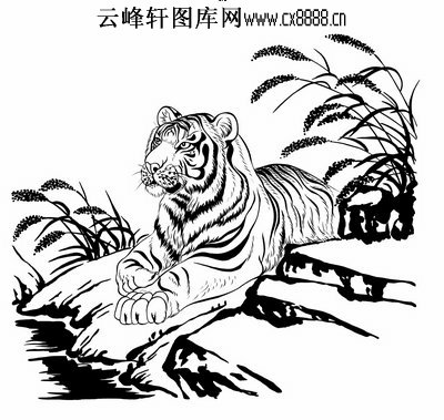 老虎铅笔手绘