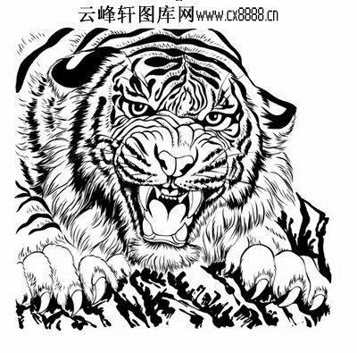虎第五版-矢量图-龙骧虎啸-26-虎矢量图