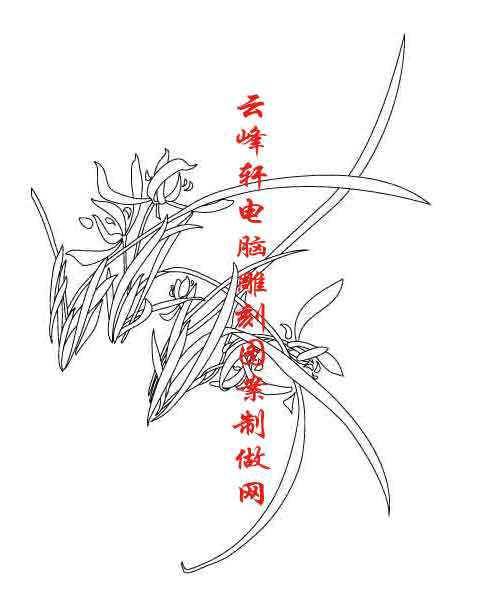 梅兰竹菊-矢量图-兰草-mlxj120-梅兰竹菊刻绘图