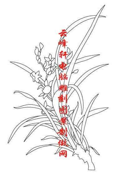 梅兰竹菊-矢量图-兰草-mlxj110-梅兰竹菊刻绘图