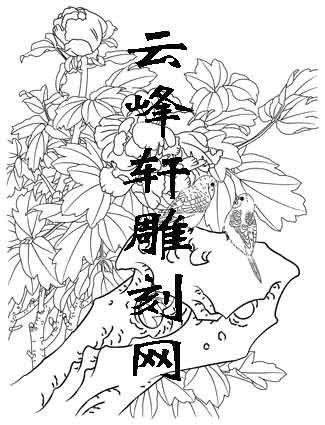 工笔牡丹-矢量图-13阿苏儿-国画牡丹图