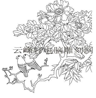 工笔牡丹精选画集-矢量图-3晓妍-矢量牡丹图案