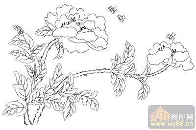工笔白描牡丹画-矢量图-蝶恋花-mdbm010-牡丹刻绘图