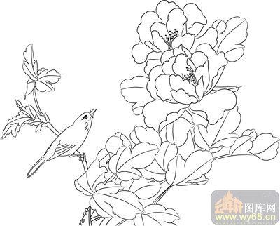 工笔白描牡丹画-矢量图-牡丹花鸟-mdbm007-国画牡丹
