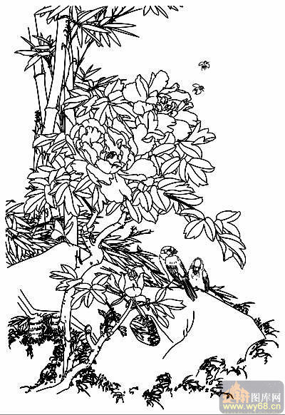 下一页:工笔白描牡丹画-矢量图-15白牡丹-牡丹刻绘