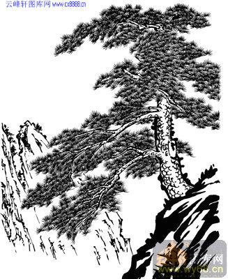 4.3迎客松-矢量图-松形鹤骨-yks021-山水雕刻图片