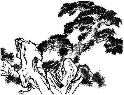 古树奇石第一版-矢量图-郁郁葱葱-20-山水全图