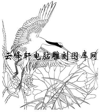 白描仙鹤-矢量图-荷叶仙鹤-29-仙鹤路径图