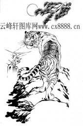虎第四版-矢量图-龙骧虎步-14-电子版虎