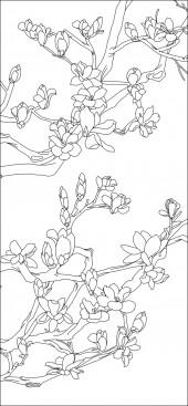 竖板22,玉兰花