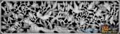 02-林中鸟-074-花鸟浮雕灰度图