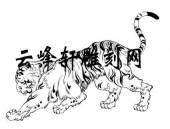 虎2-矢量图-虎步龙行-91-虎全图