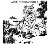 虎第五版-矢量图-燕颔虎头-36-电子版虎