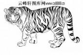 虎第五版-白描图-猛虎-43-老虎雕刻图案