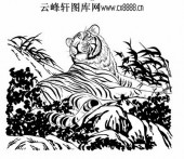 虎第五版-矢量图-凤叹虎视-28-虎矢量图