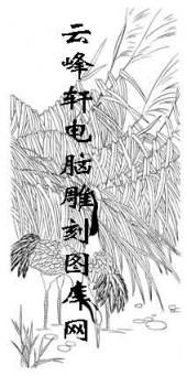 白描仙鹤-矢量图-长身鹤立-27-仙鹤路径图
