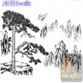2010.4.3迎客松-白描图-顶风傲雪-yks010-迎客松白描图