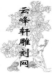 工笔牡丹-矢量图-17国色天香-路径牡丹图片