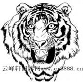 虎第四版-矢量图-虎头-2-虎全图