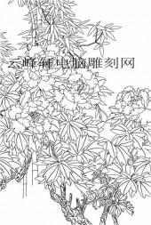 工笔牡丹精选画集-矢量图-5国色芳韵-牡丹路径图