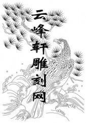 路径鹰-矢量图-鹰咏-aaab4-矢量鹰